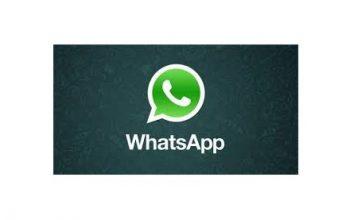Contactanos por Whatsapp 1151340615